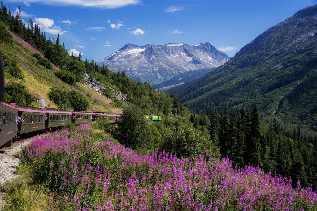 Amazing Train Rides